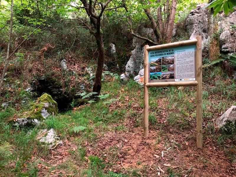 Cueva Pelicordia de Miera 2